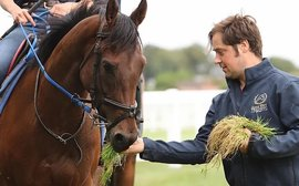 'There's going to be carnage': an up-and-coming trainer's verdict on the plight of smaller stables