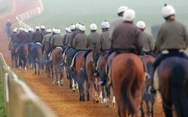 Britain's elite 'super trainers': how they are becoming even more dominant