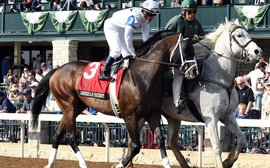 Why Royal Ascot is a natural target for American Patriot as WinStar pursue new horizons