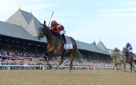 Travers: why a horse like Catholic Boy is almost as hard to find as a Triple Crown winner