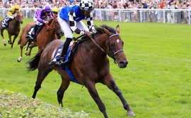 Sidelined again: how many comebacks does Protectionist have to make?