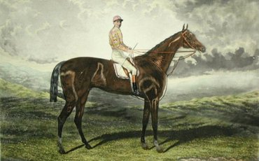 Hampton: the former selling-plater and hurdler who had a major impact on the breed
