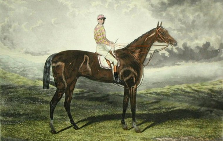 Hampton: the former selling-plater and hurdler who had a major impact on the breed   Topics: Cyllene, Hyperion, Man o'War   Thoroughbred Racing Commentary