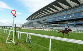 Royal Ascot: it's the big time now for new sprint sensation Sceptical