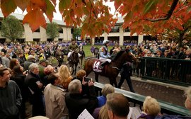 Keeneland: a unique and powerful force for the industry