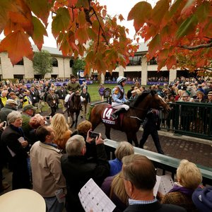 Keeneland A Unique And Powerful Force For The Industry