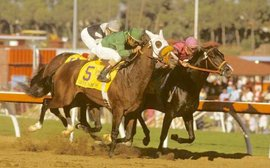 Breeders' Cup: re-live that momentous first meet 35 years ago