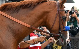 How the shadow of Justify looms large over the BC Classic