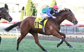 Super filly Bonneval the star of awards night show