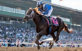 Why breeders just love Breeders' Cup Dirt Mile hero Tamarkuz