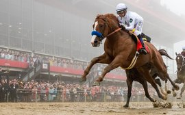 TRC Preakness article wins another award for Bob Ehalt