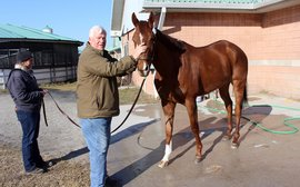 Pink Lloyd on target for another perfect season as it's back to work at Woodbine