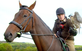 Video: watch this one-eyed G2 winner in his new life with the birds