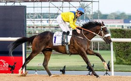 Mubtaahij set for Meydan prep ahead of Dubai World Cup bid