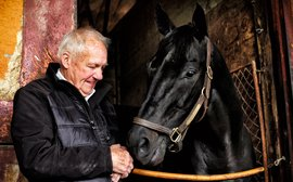 A special day to celebrate 'a horse of a lifetime'