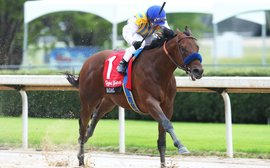 Kentucky Derby Prep School: Can Baffert's young stars take this major next step?