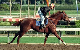 Children of Secretariat: the giant killer who twice toppled a champion
