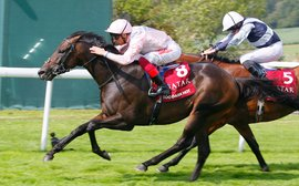 Gosden to 'work back' from the Breeders' Cup Mile for Too Darn Hot