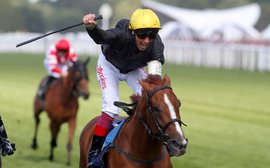Who's been shining in Britain since Champions Day last year?