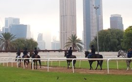 Dubai's brave new world where smaller owners can mix it with the Maktoums