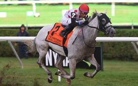 World Approval, Mondialiste and Deauville top list of 26 nominated to Ricoh Woodbine Mile