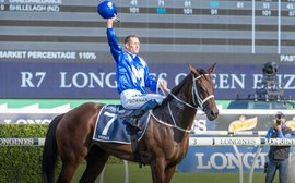 Winx is your World Horse of the Decade