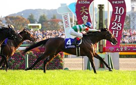 Japan Cup: it's all coming right for Rey De Oro to show his true quality