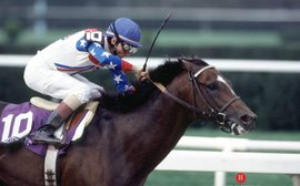 The perfect season: remembering Cigar's incredible 1995