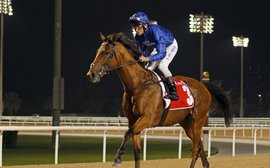 Could this be Saeed Bin Suroor's eighth Dubai World Cup winner?