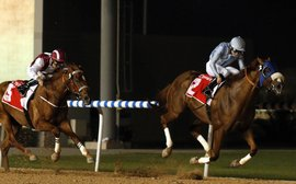 Long River is no forlorn hope for the Dubai World Cup