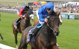 Godolphin blueblood Frontiersman 'all systems go' for Newmarket test