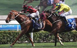 British breeding produces another star turn in Hong Kong