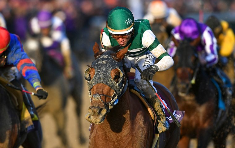 Eclipse Awards reader poll: so who do YOU think should be Horse of the Year?