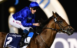 Relentlessly progressive: the rise and rise of William Buick