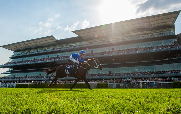 Team Winx on a high as the great mare signs off in style