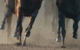 U.S. racing can significantly reduce horse fatalities, but do we have the courage to do it?