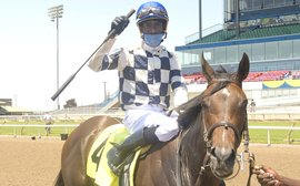 Breakthrough win as top work rider Hoyte resurrects his racetrack career