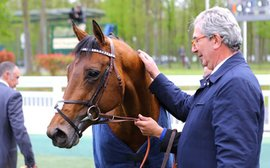 How French stables are shaking off the 'catastrophic' effects of the virus