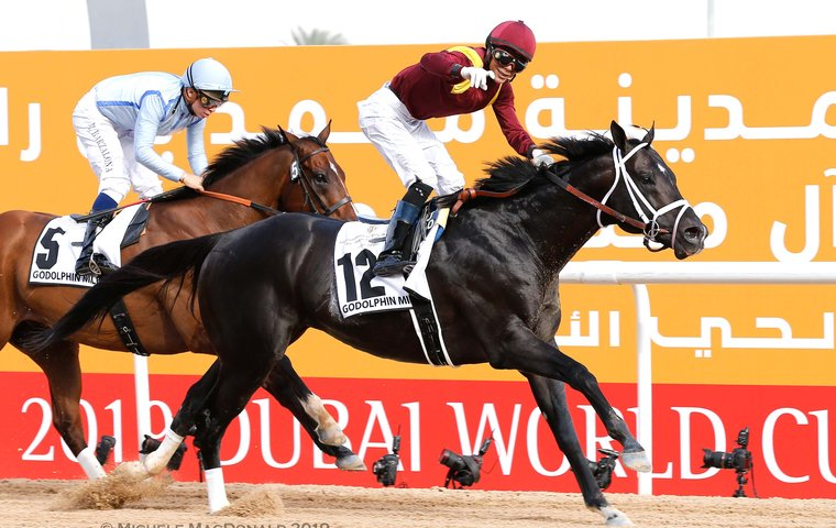 Team America riding high after $7.8m worth of success on a proud night in Dubai
