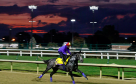 Breeders' Cup announces individual head2head wagering matchups