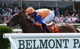 Baffert, Brown and Pletcher: how the Big Three measure up on our stats