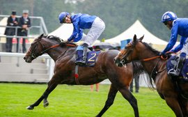 Why the horse who 'won' Royal Ascot is such an outstanding stallion prospect
