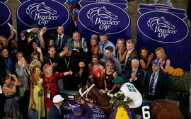 2016 Breeders' Cup: Who are your picks?
