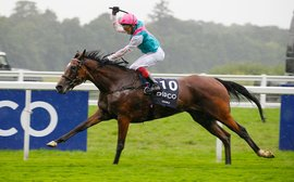 Enable's King George romp means Nathaniel is closing in on Frankel