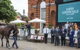 Entries open for Goffs London Sale on the eve of Royal Ascot