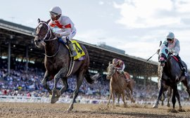The best races on turf and dirt in 2019