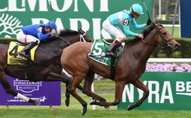 Stars of the Breeders' Cup: get ready to hail miracle filly Lady Eli