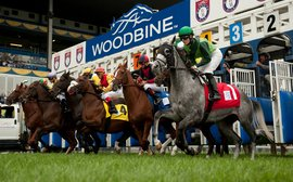 The latest moves in the battle to end Woodbine's employment crisis