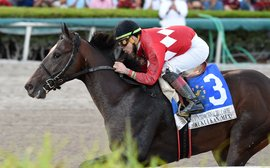 Pegasus: Dirt race shaping up nicely, but new $7m Turf contest looks to be work in progress