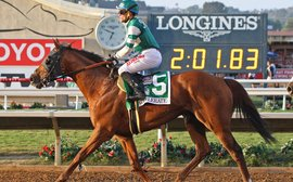 48 hours that will shape the legacy of a horse who proved there's life beyond the Triple Crown